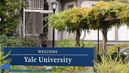 Yale Class of 2024 gap years